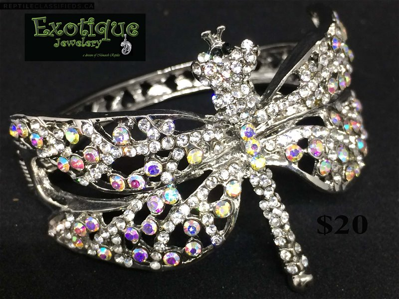 Dragonfly bracelet - Reptile Classifieds Canada